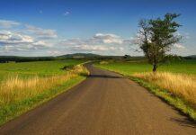 ile kosztuje hektar ziemi